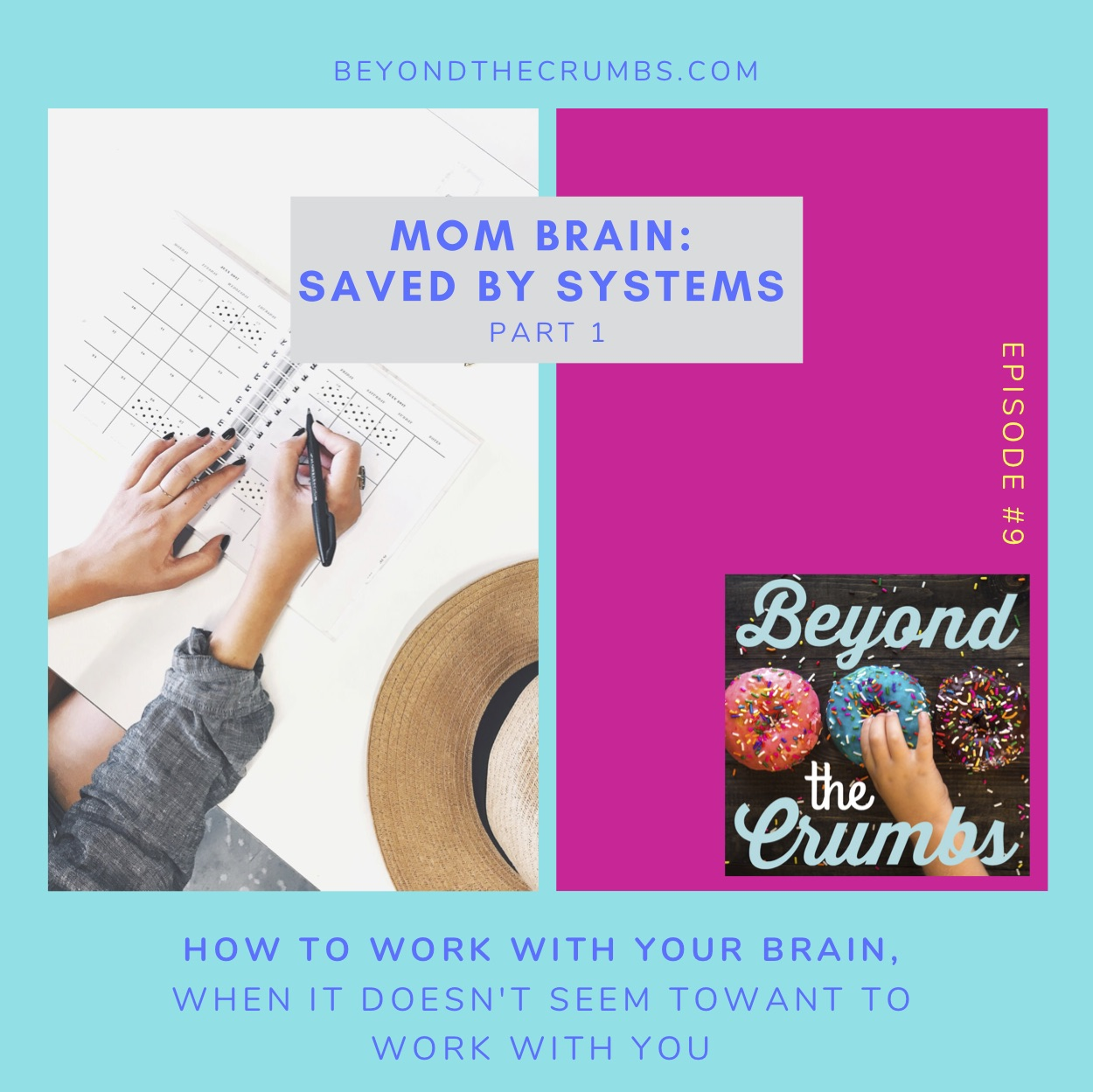Mom Brain: Saved by systems, part 1